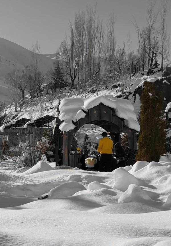 تهران شمشک