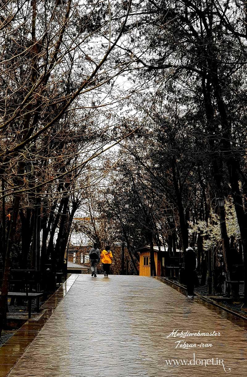 تهران  عاشقانه