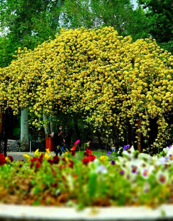 پارکهای تهران 1400